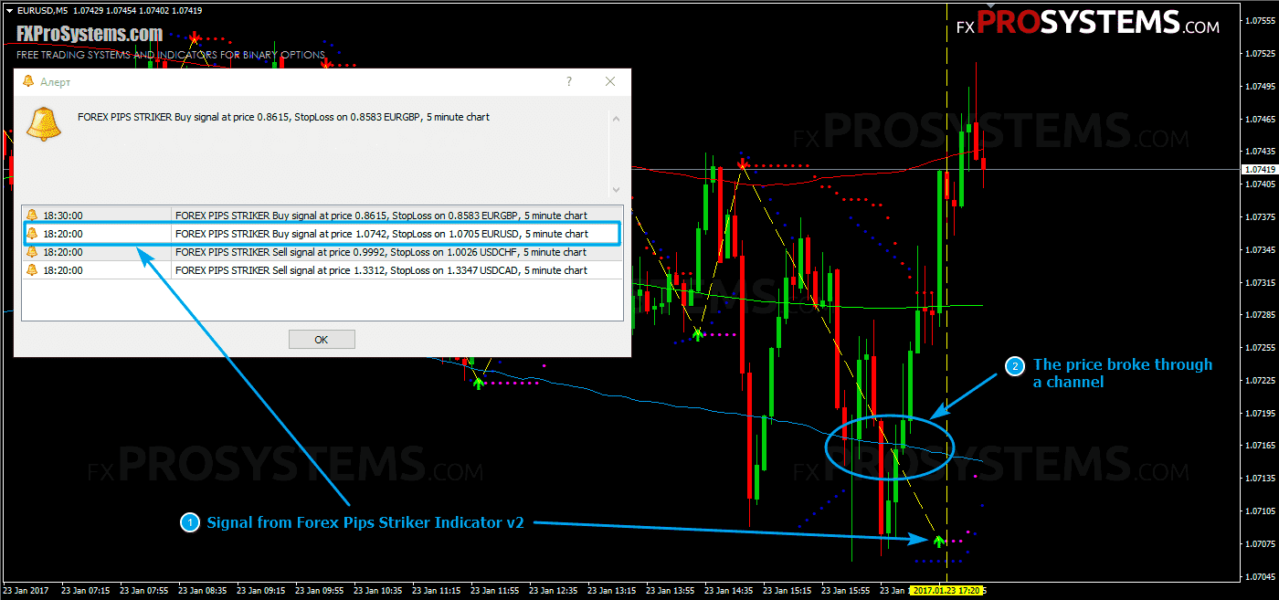forex-pips-striker-rules-call