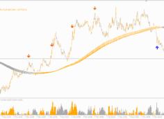 nexus-6.1-indicator